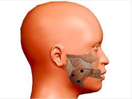 Applicazione terapeutica della tossina botulinica in ambito ...